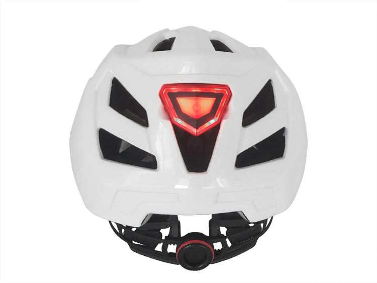 Downhill Helmet 13